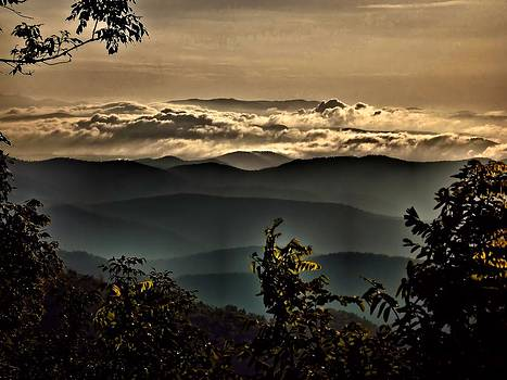 The Smokies by David Walsh