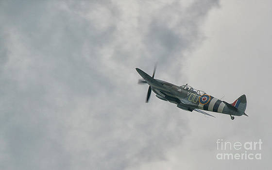The Spitfire by Lee-Anne Rafferty-Evans