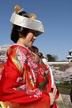 The splendor of a Kimono by Andrei Fried