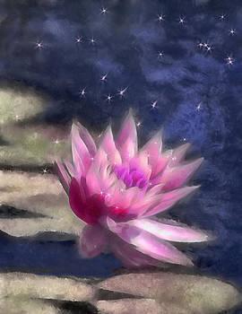 The Star Catcher by Jill Balsam