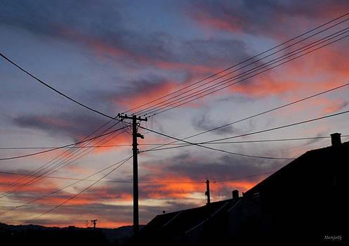 The sunset  in the net... by Marija Djedovic