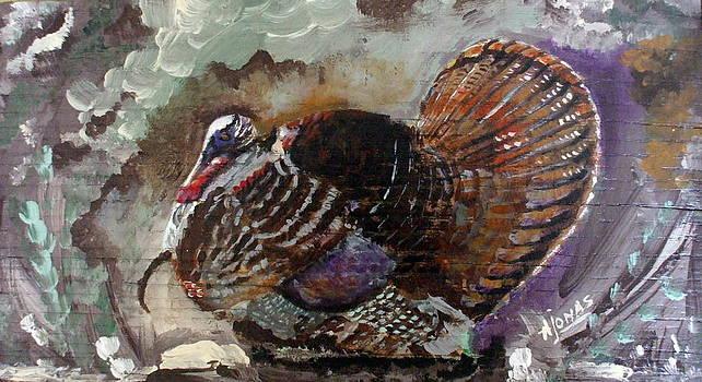 Amalia Jonas - The tail feathers