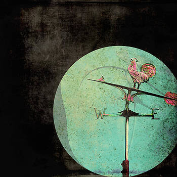 The Tale of a Weather Vane  by Sharon Coty