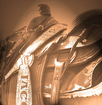 The Team Ropers Saddle by Robin Hewitt