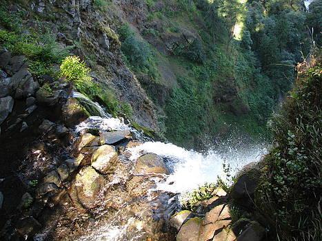 The Top of Multnomah Falls by Monica Cranswick