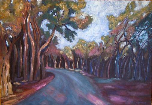 The turn of the road by Ina Gerogianni