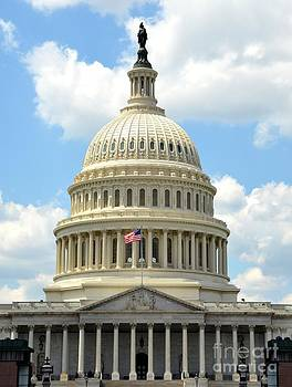 Pravine Chester - The US Capitol