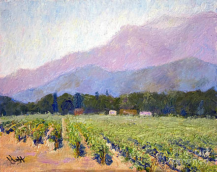 The Vineyards by Patricia Huff