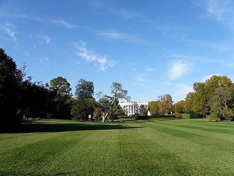 FeVa  Fotos - The White House