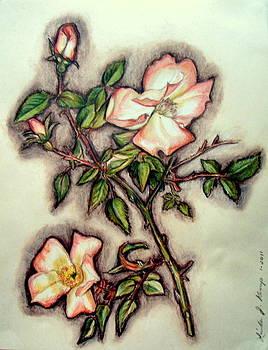 The Wild Rose by Linda Nielsen