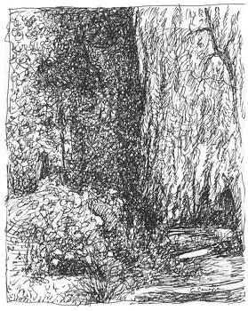 The Willow by Elizabeth Carrozza