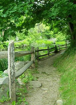 The Winding Path by KJ Waters