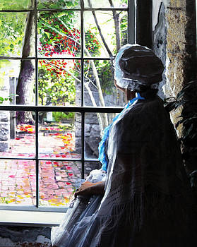 The Window by Francoise Lynch