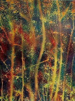 The woods by Avi Gorzhaltsan