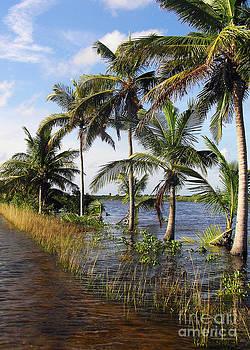 Li Newton - Then The Floods Came