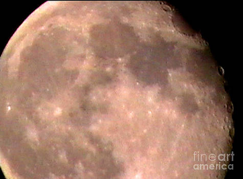 Theres a moon out tonight by John From CNY