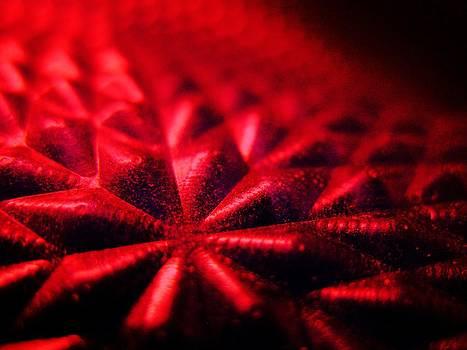 Thermal Bloom by Richard Lloyd
