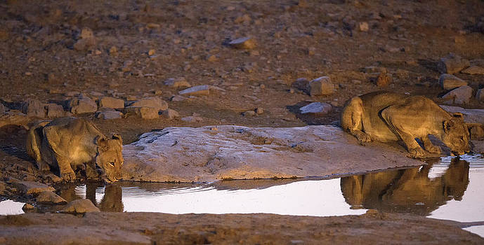 Paul W Sharpe Aka Wizard of Wonders - This is Namibia No.  7 - Ripples Reflect