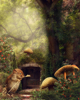 This magical world by Cindy Grundsten