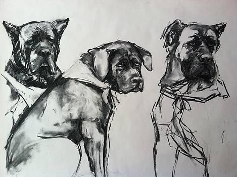 Three Generations by Michelle Winnie