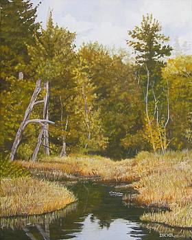 Three Turtles Lake Conestee by Robert Decker