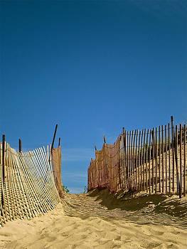 Through the Dunes by Susan Elise Shiebler