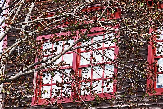 Thru the Red Window by Sandi Blood