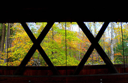 Thru the XX is Fall in New England by Kim Galluzzo Wozniak