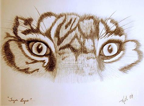 Tiger Eyes by Art Hill Studios