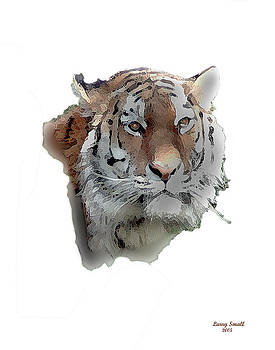 Tiger Head by Larry Small