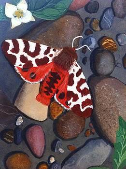 Tiger Moth on River Rocks by Amy Reisland-Speer