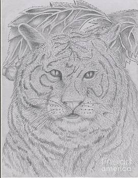 Tiger -n- Pencil by Lenell Gent