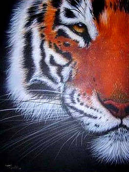 Tiger Portrait by Tim Towler