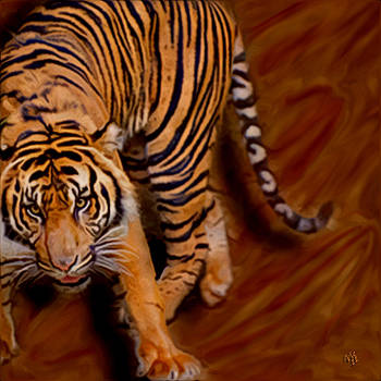Tiger by Vic Weiford