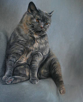 Tilly on the step by Lucinda Coldrey