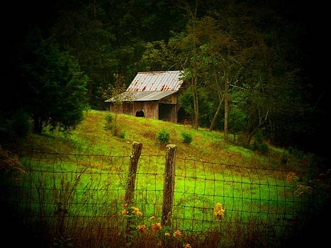Tin Roof Barn by Joyce Kimble Smith