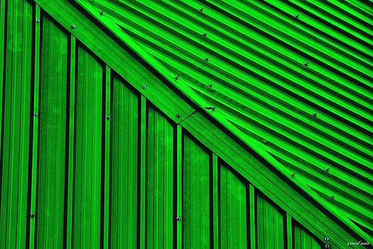 Tin Roof by Vinod Nair