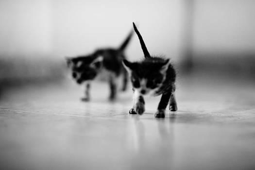 Tiny Terrorists by Victor Bezrukov