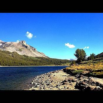 Tioga Lake by Zachary C