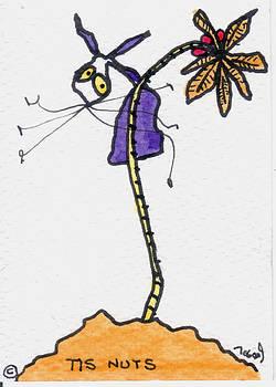 Tis Nuts by Tis Art