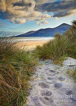 To The Beach by Derek Smyth