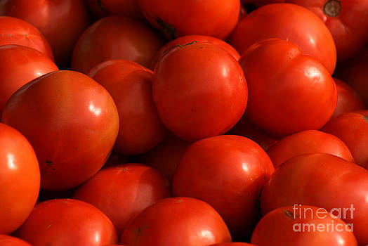 Tomatoes by Angela DiPietro