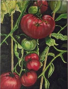 Tomatoes From My Garden by Terry Godinez