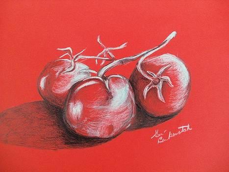 Tomatos On Red by Geri Berkenstock
