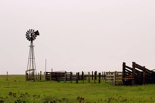 Too Still Windmill by Lindy Spencer