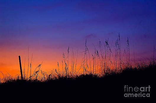 Topsail Sunset by Jane Brack