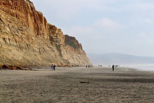 Torrey Pines and Beyond by Kelly Turnage