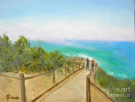 Torrey Pines State Park by Julie Sauer