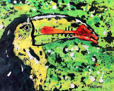 Toucan by Norma Gafford