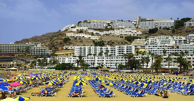 Tourist Paradise by Alfredo Rodriguez